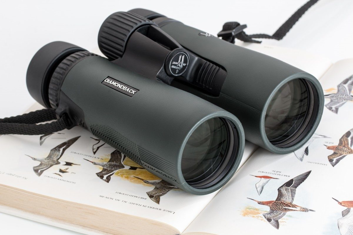 Find The Best Binoculars For Hunting In 2019