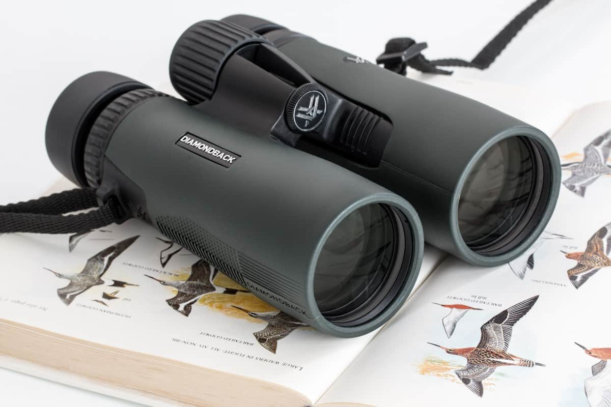 Find The Best Binoculars For Hunting In 2018